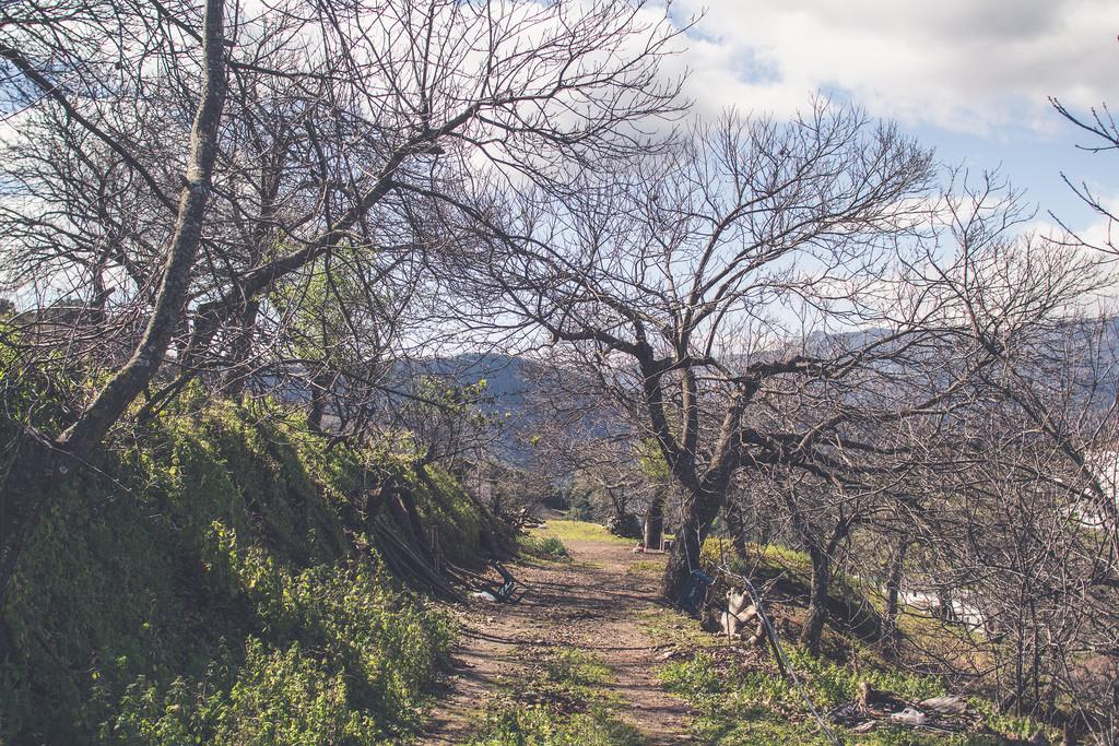 puente-de-andalucia-serrania-ronda-farajan-15
