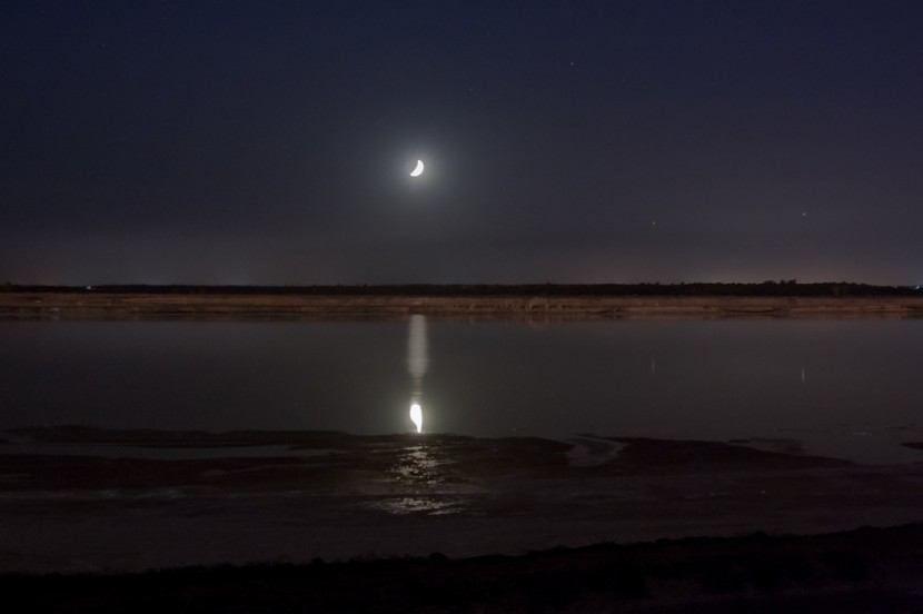 Nocturnas 2