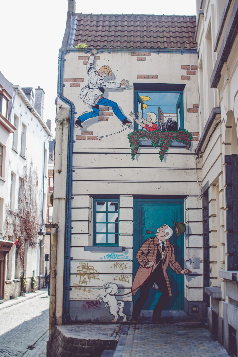 Bruselas 8
