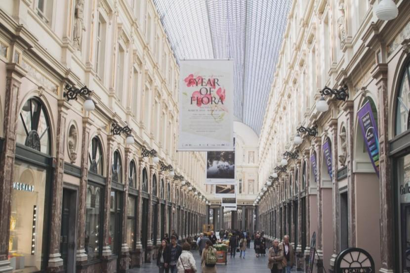 Bruselas 12