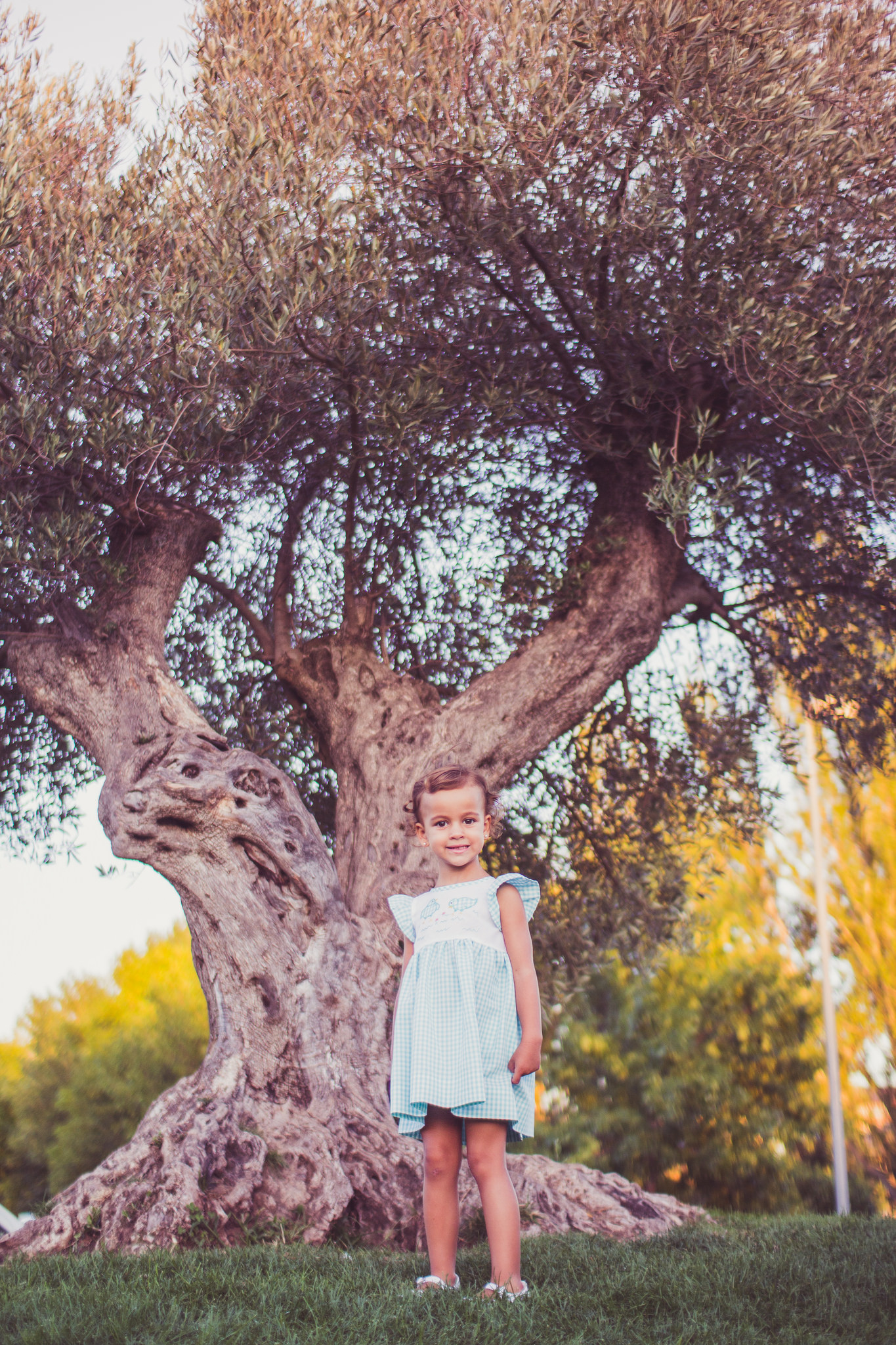 fotografia niños jaca sesion